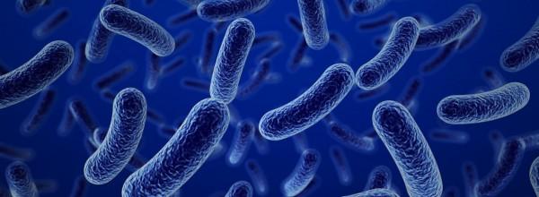 La carrera contra las bacterias