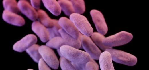 companias-farmaceuticas-desarrollo-antibioticos-CDC_CLAIMA20160825_0254_28